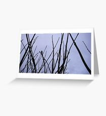 Twigs against a dull sky Greeting Card