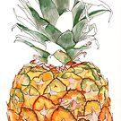 Pineapple Fruit by blueidesign