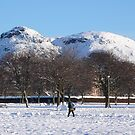 Snow-covered Arthur's Seat by contradirony