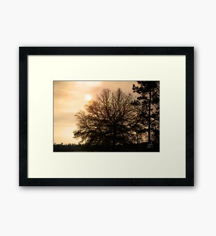 Strongly I Stand Framed Print