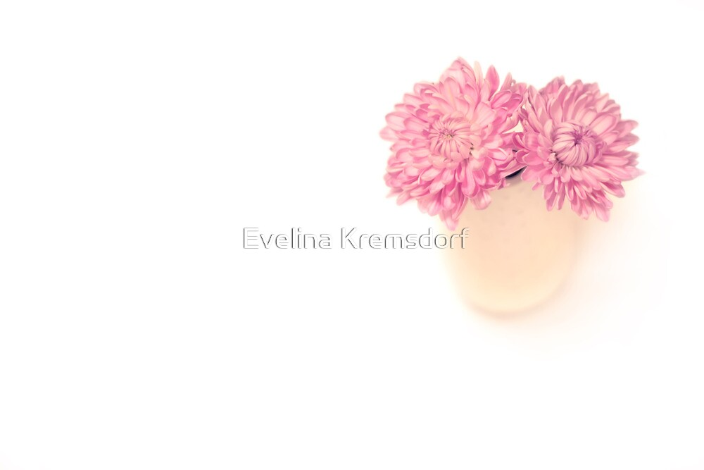 Sweet Harmony by Evelina Kremsdorf