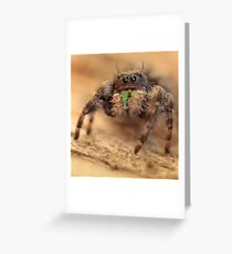 lil monster Greeting Card
