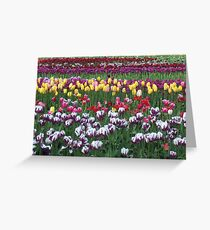 Woodland Tulip Festival Greeting Card