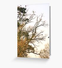 Rookery Greeting Card