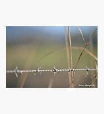 [Metal] Barbed wire Photographic Print