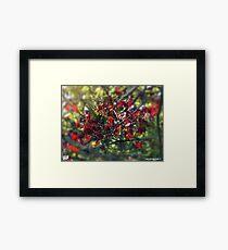 Red & Green Framed Print