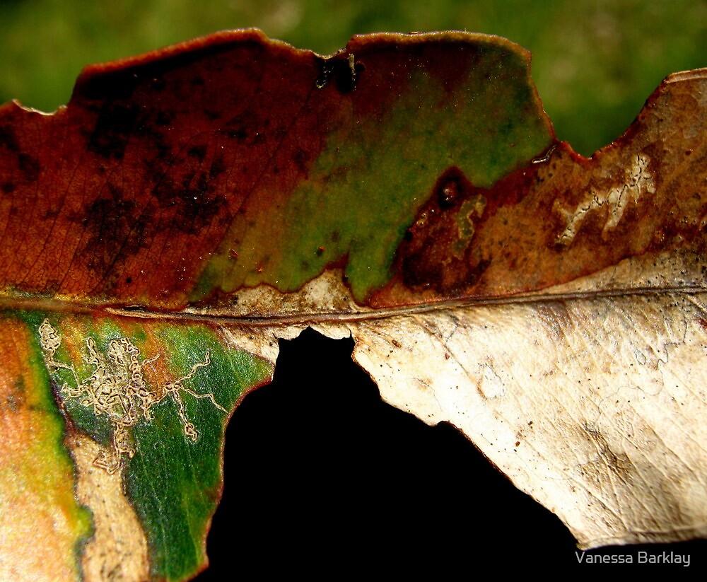 Leaf... by Vanessa Barklay
