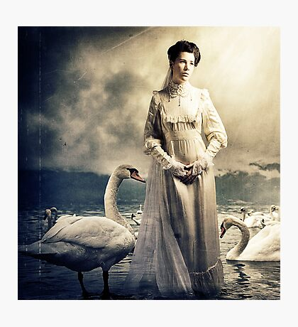 Her Swans Photographic Print