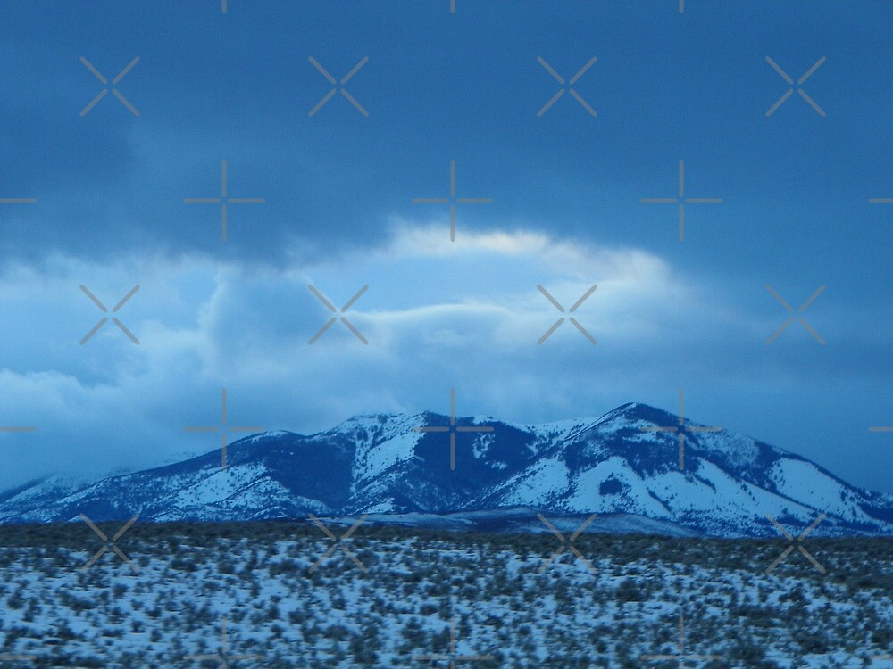 Ironside Mountain Blues by Betty  Town Duncan