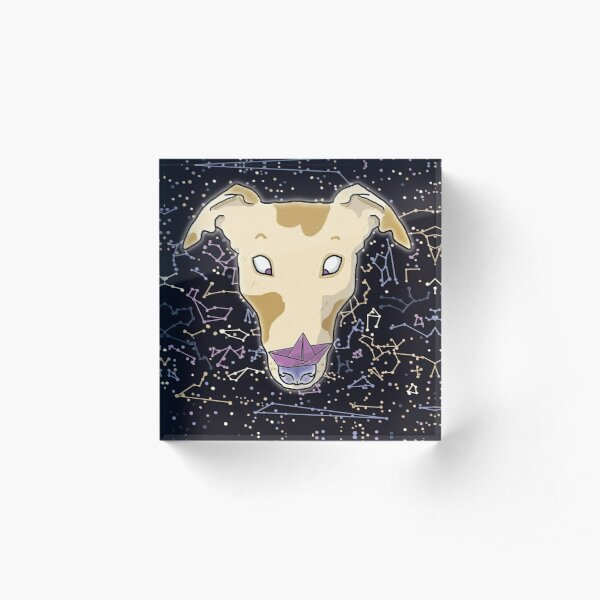 Hey space greyhound, you have something on your nose! Space hound illustration print with a surprised greyhound with a paper boat on his nose on a black and violet constellation background Acrylic Block