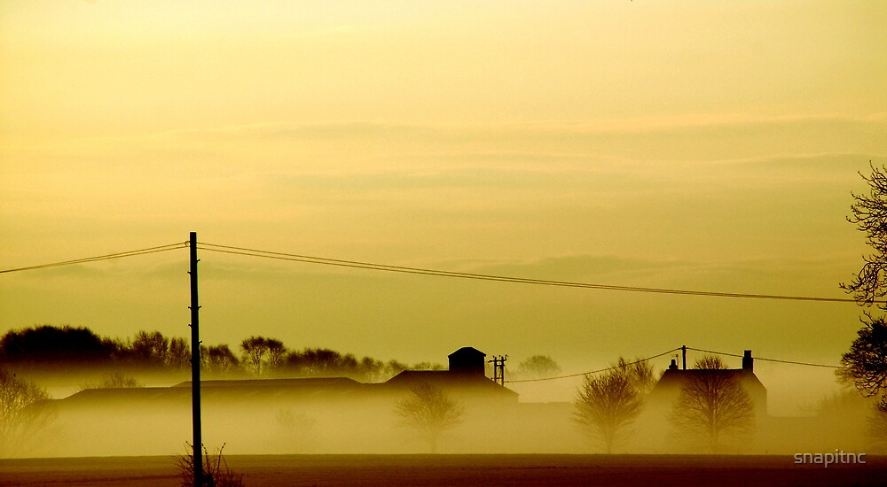 """MISTY MORN AT OLD MOSS FARM"" by snapitnc"