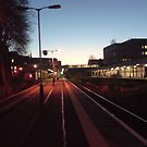 Exeter Central Station at Dusk by Hucksty