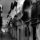 Camino hispano by marcopuch