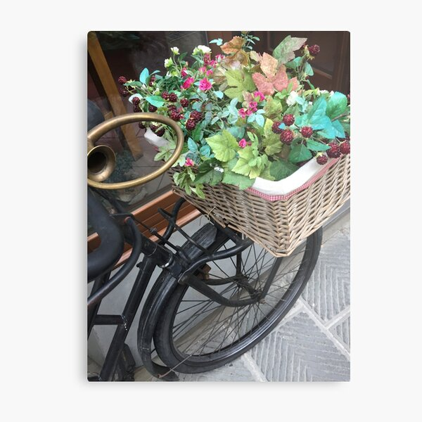 Flower Basket Byclette Metal Print