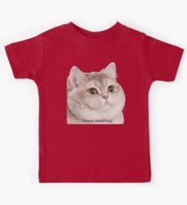 Heavy Breathing Cat- Improved Kids Tee