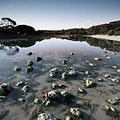 Peaceful Lake by Ben Goode