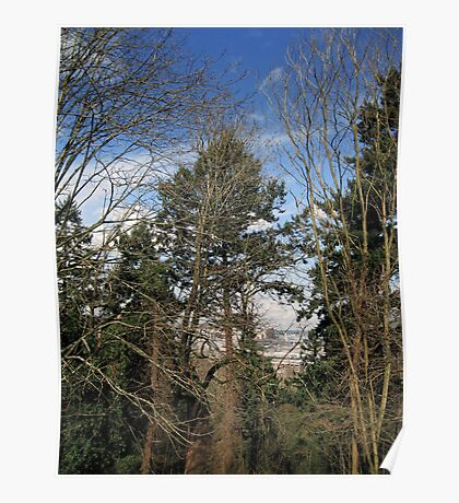 Our Park: McKinley Park in Tacoma 20110319a Poster
