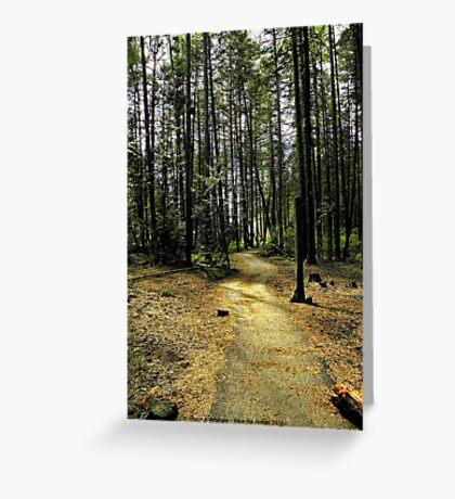 Kootenai Falls Trail Greeting Card