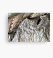 Organic abstract Canvas Print