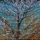 Steel Blue 2 by Sandra Guzman