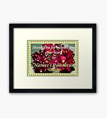 Another Challenge Framed Print