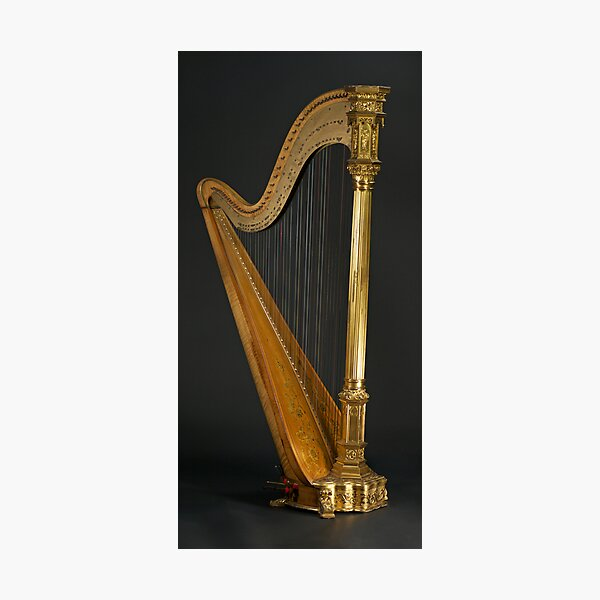 Antique Harp -1900's Era Wurlitzer Harp Photographic Print