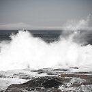 waves von Greg Shield