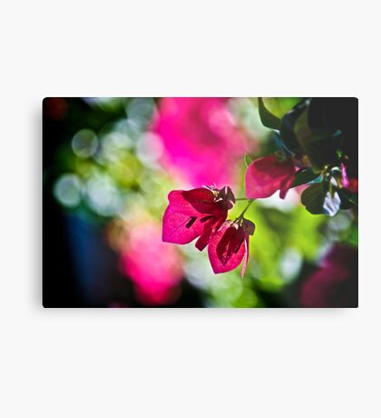 When my dream is Bokeh...:On Featured: The-power-of-simplicity Group Metal Print