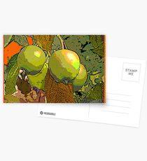 MeleCotogne(Quinces) Postcards