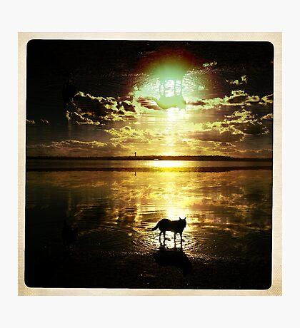 Dream shadow Photographic Print
