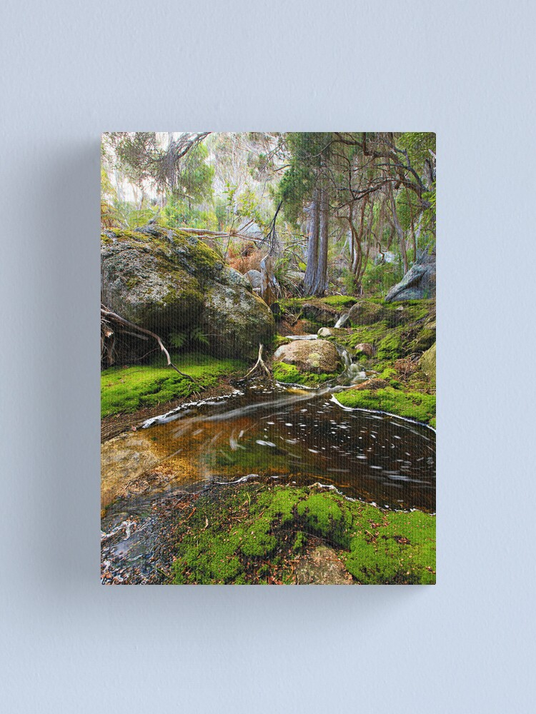 Alternate view of Rockpool  -  Flinders Island Canvas Print