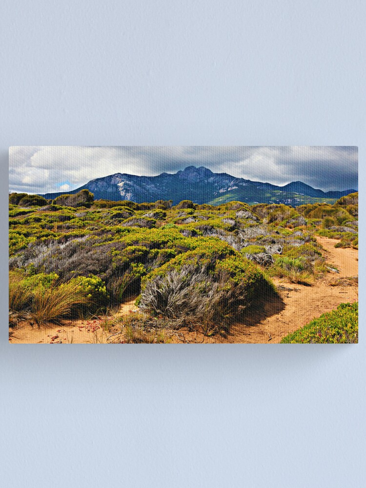 Alternate view of Mount Strzelecki - Flinders Island Canvas Print