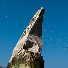 Sea Stack by mikebov