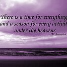 A Time for Everything by Samantha Higgs