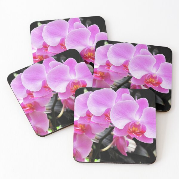 Arch Of Orchids Coasters (Set of 4)
