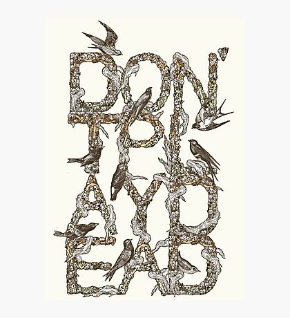 Don't Play Dead Photographic Print