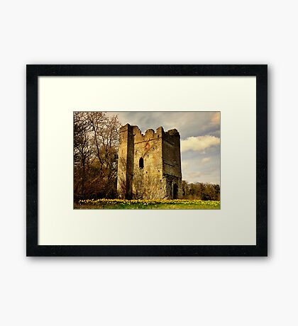 Lanestown Castle. Framed Print