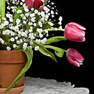 Potted Tulips by Maria Dryfhout