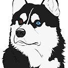 Black & White Husky  by rmcbuckeye