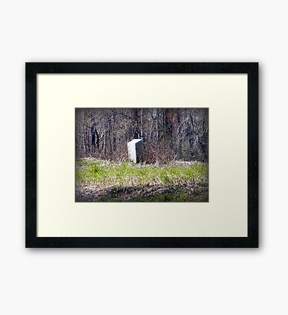 Tombstone in Field Framed Print