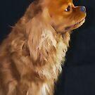 Ruby Royal Dog by daphsam