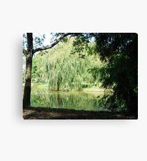 ~` Willow Lake `~ Canvas Print