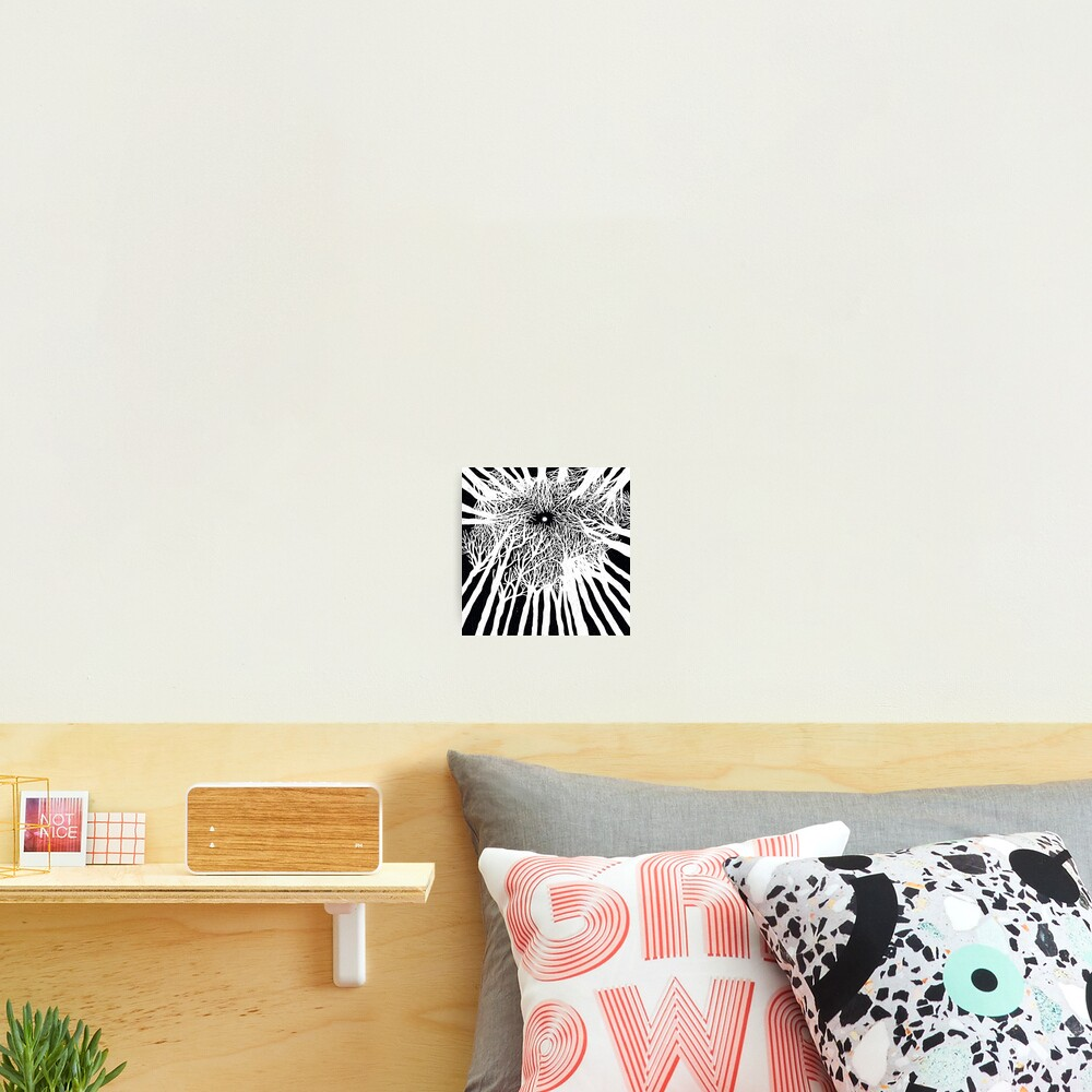 black and white illustration, night in the wood with stars and moon Photographic Print