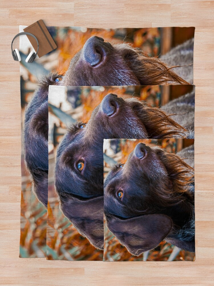 Alternate view of German Wirehaired Pointer Portrait Throw Blanket