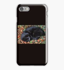 Guess who l found under the Hedgerow.. iPhone Case/Skin