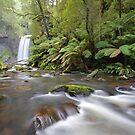 Hopetoun Falls by Tim Beasley