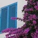 Blue shutters and bougainvillea by Elena Skvortsova