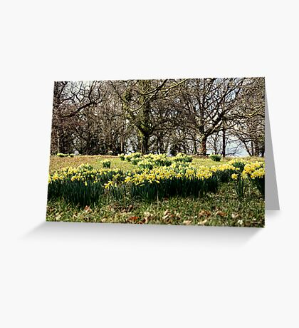 Spring on the Crom Estate Greeting Card