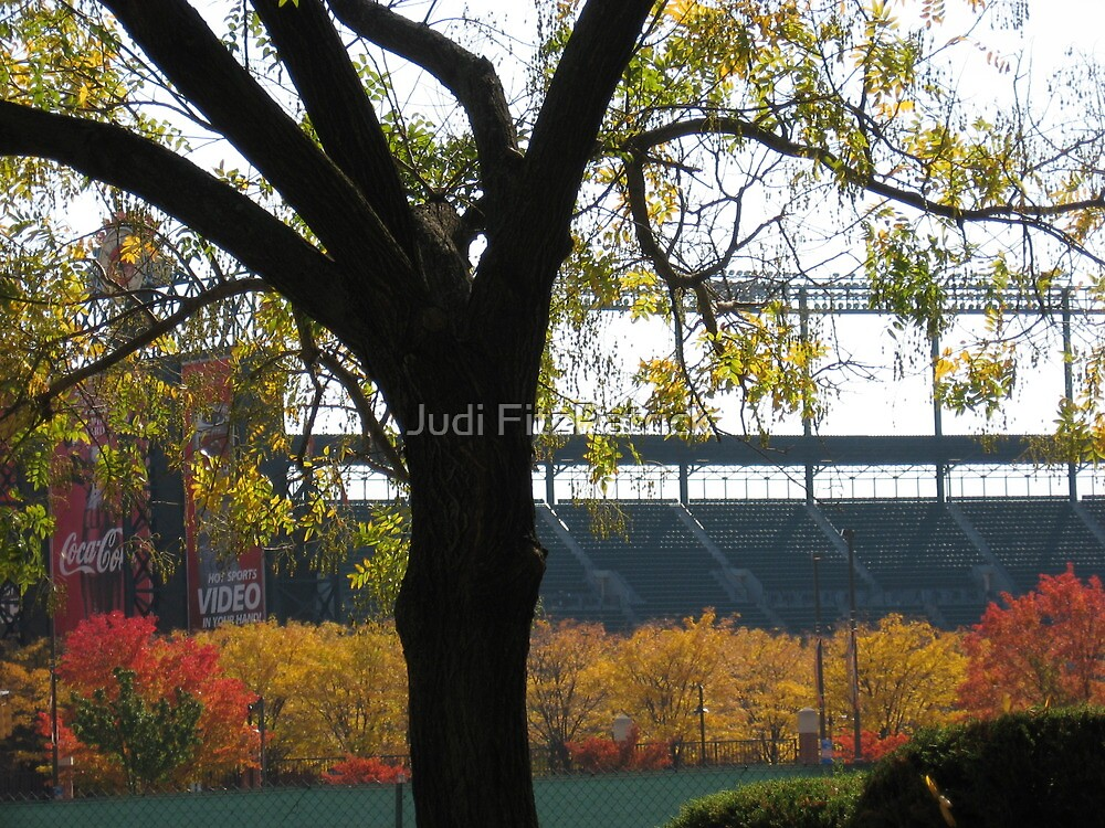 Autumn at Camden Yards by Judi FitzPatrick