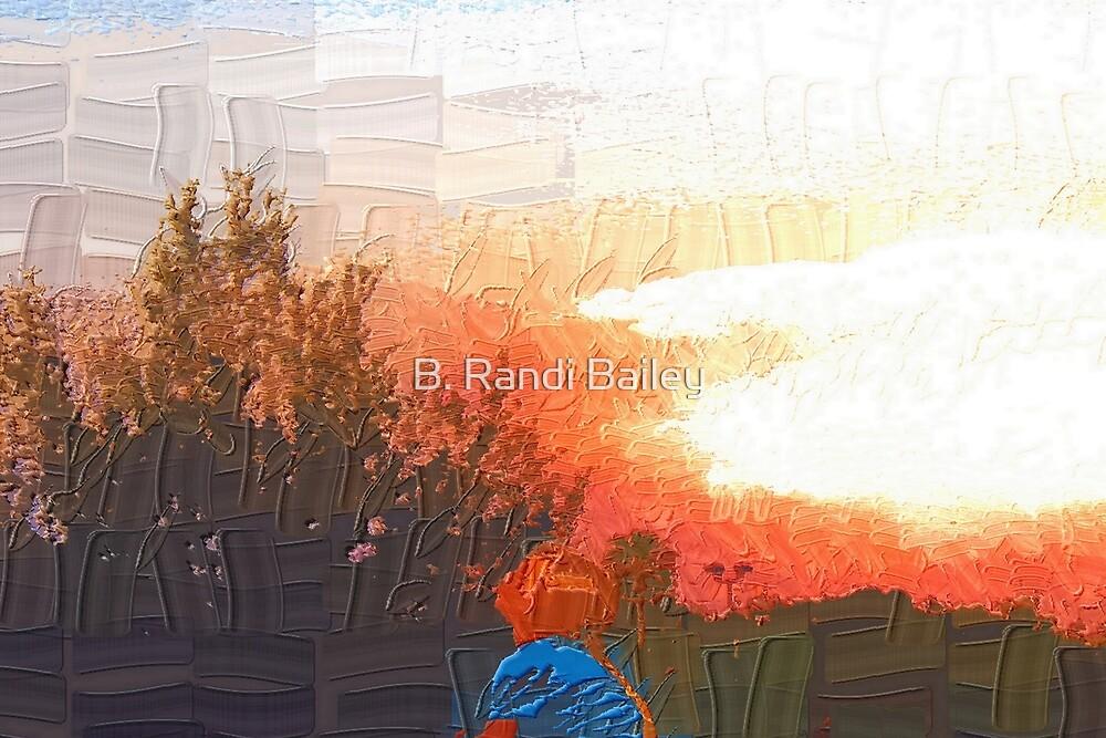 Watching the sky by ♥⊱ B. Randi Bailey
